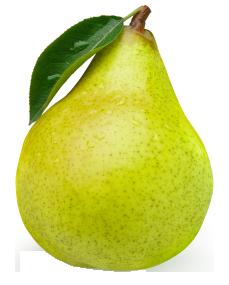 paerenyny